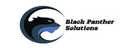 BPS Immigration Firm | Hybrid Legal CMS